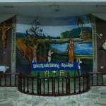 OurLadyofVailankanni shine-Selvapuram-Coimbatore3